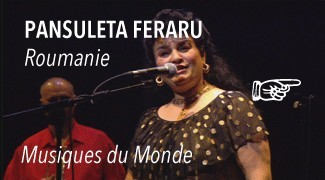 Concert Pansuleta Ferraru