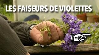 Les faiseurs de violettes